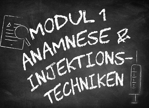 Modul 1 Anamnese & Injektionstechniken
