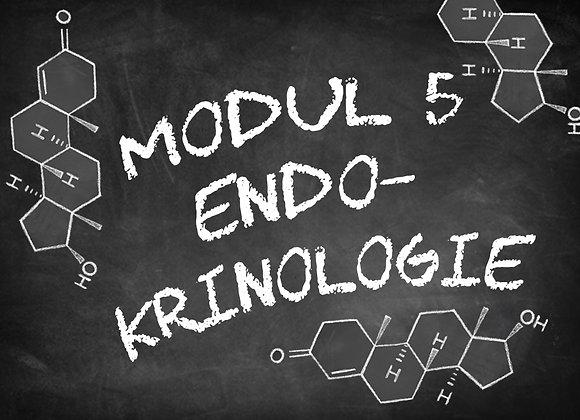 Modul 5 Endokrinologie