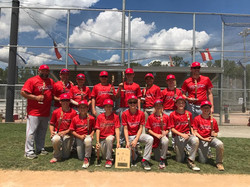 12U Stafford Warriors Cal Ripken District 8 Champs - Spring 2017