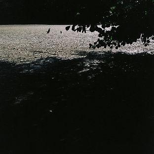 011s.jpg