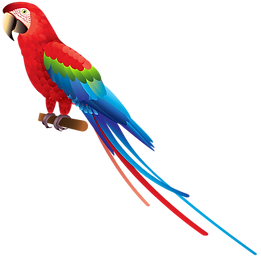 37333-5-parrot-image.png