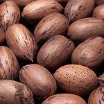 אגוזי פקאן בשייק