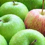 תפוח עץ בשייק