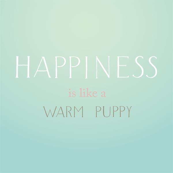 happiness-schrift-600pxl.jpg