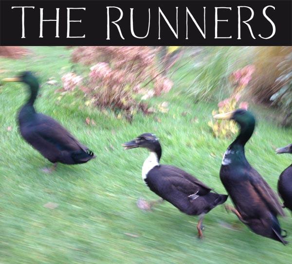 i ran (so far away)