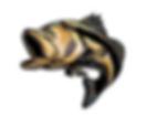 fishinghookupz.logo.copywrite_subject