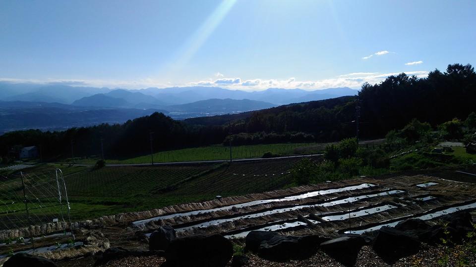 5畑からの景色