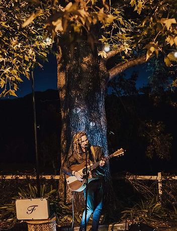 Ole falco music tree.jpeg
