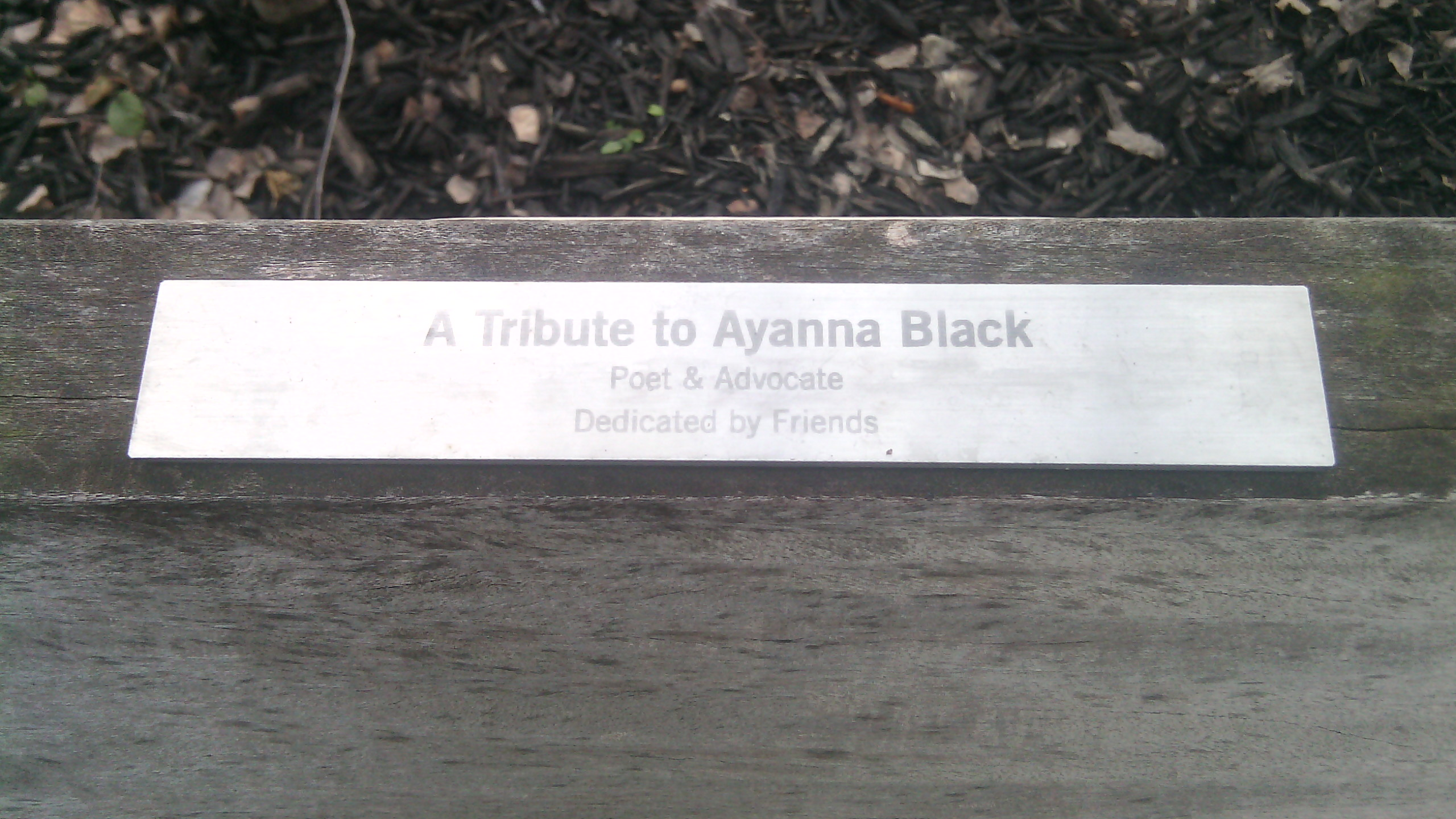 3. ayanna black plaque tight