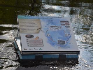 Nos panneaux flottants sont sur l'eau !