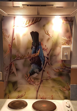 Tui by Lucy G