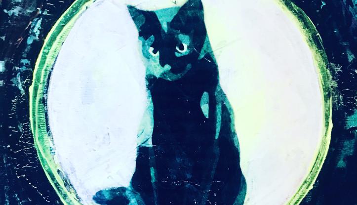 #catdrawing #acrylic drawing #catprint #
