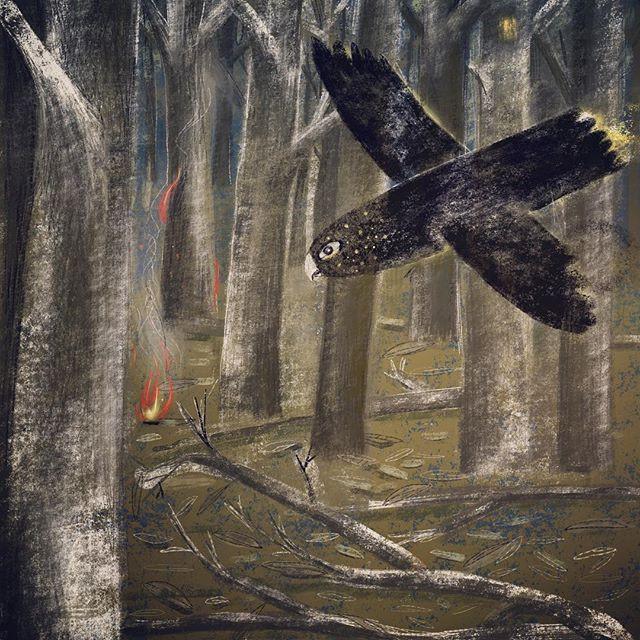 Folktale Week: Forest