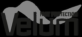 Logo_Velum.png