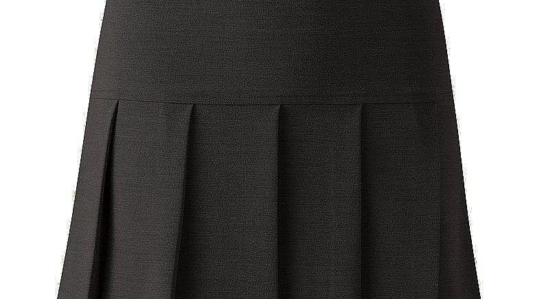 Drop Waist Panel All Round Pleated Skirt
