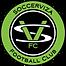 SVFC_Logo.png
