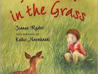 Short & Snappy Happy Book Blog: A Fawn in the Grass