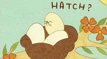 Short & Snappy Happy Book Blog: What Will Hatch?