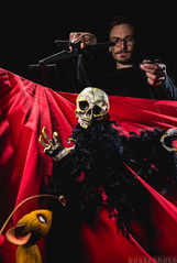 Brochure pour le DESS en Marionnettes