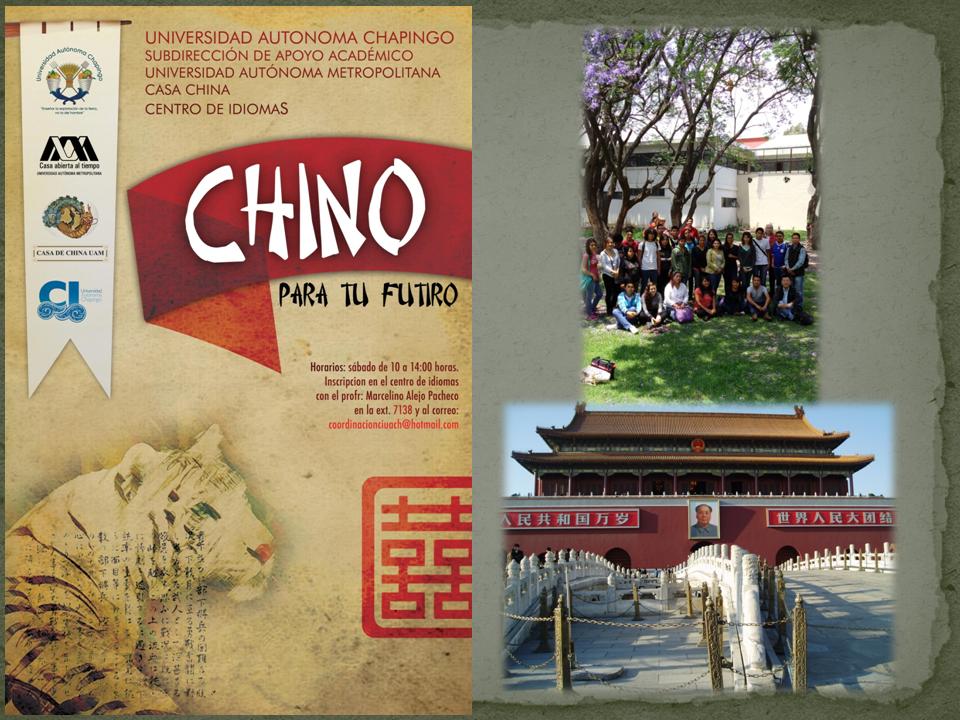 Chino UACh2.png