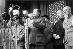 Mao10.1.49