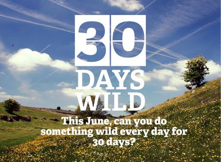 #30DaysWild - Lincolnshire