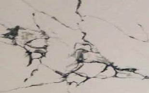 Calacatta Onyx