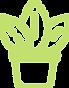 Arbovita – Aluguer Plantas