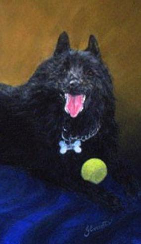 Pet Portrait of Dog