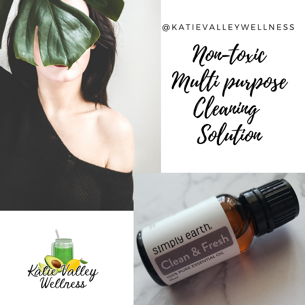 DIY Non Toxic Multi Purpose Spray