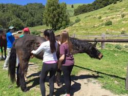 Cesar Chavez Day of Service 2016 Halleck Creek Ranch (16).JPG