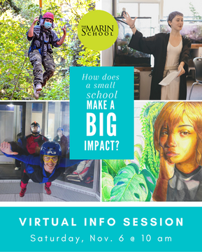 Get to know TMS! Virtual info Session + Open House