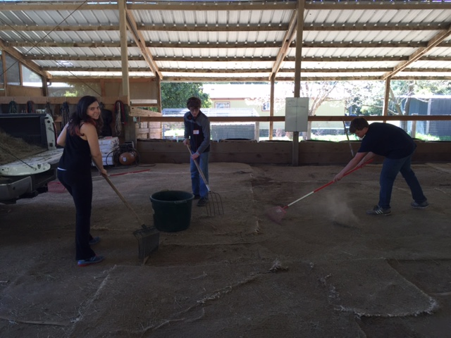 Cesar Chavez Day of Service 2016 Halleck Creek Ranch (10).JPG