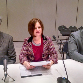 Sky Scape Testifies | New Jersey Senate
