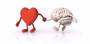 Heart hand to hand with the brain.png