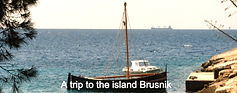 trip to the island Brusnik