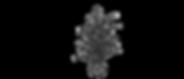 盆栽.png
