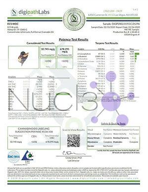ECS-WDC-1.jpg