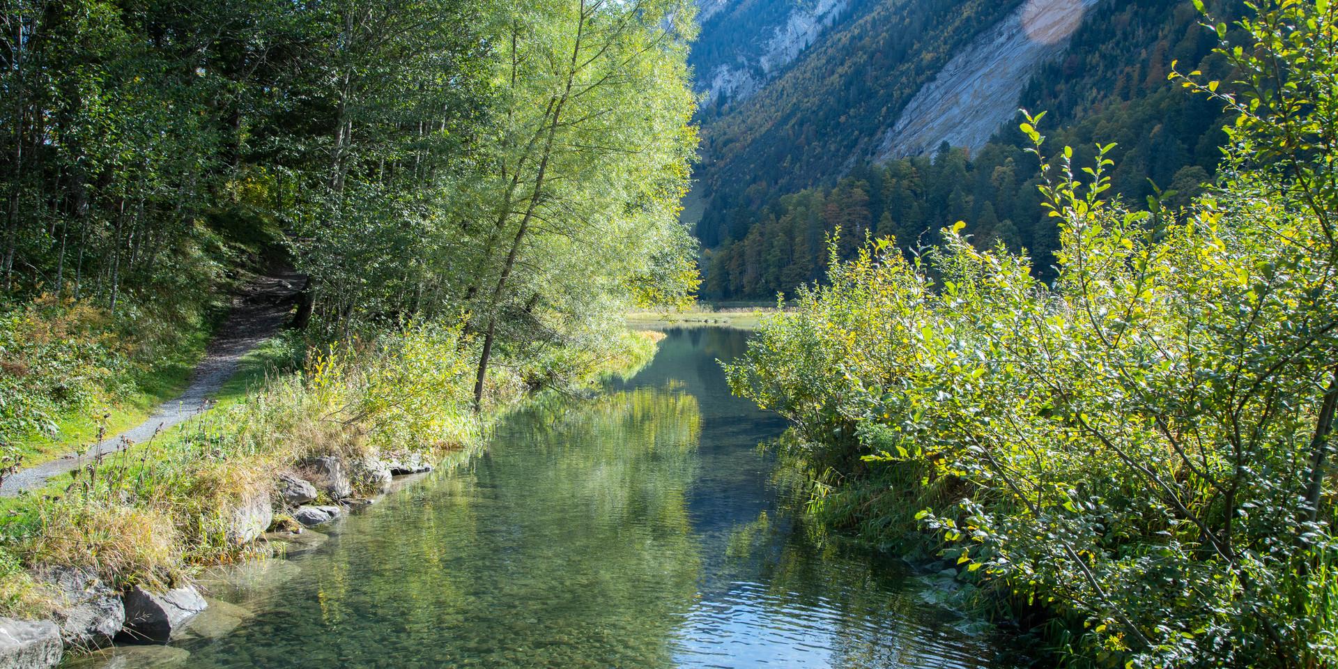Bergbach am Obersee