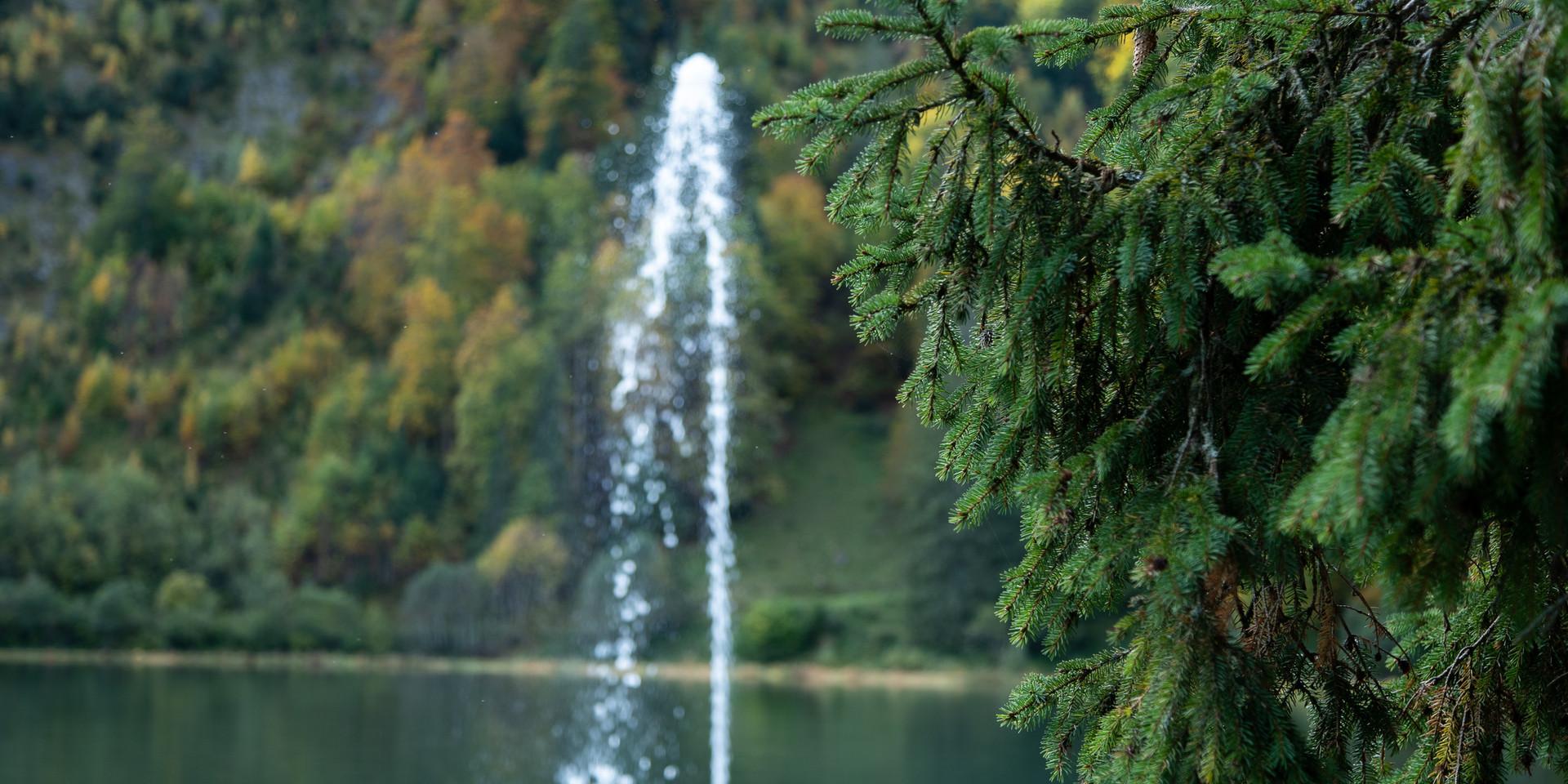 Springbrunnen Obersee Näfels