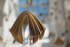 book-436507_1920.jpg