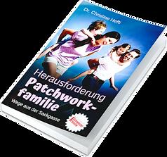 Herausforderung Patchworkfamilie.png