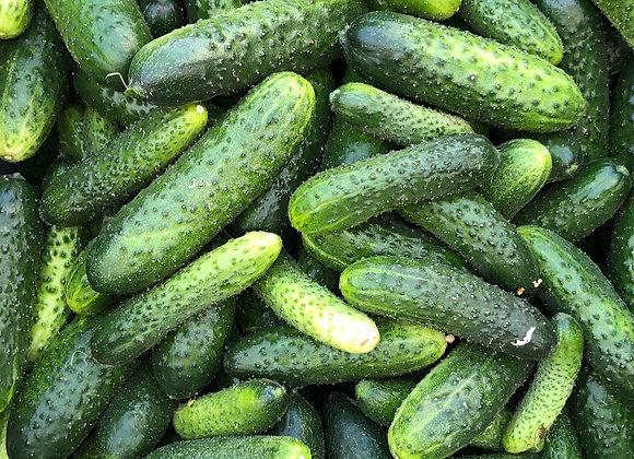 5 lbs Pickling Cukes (sm/med)