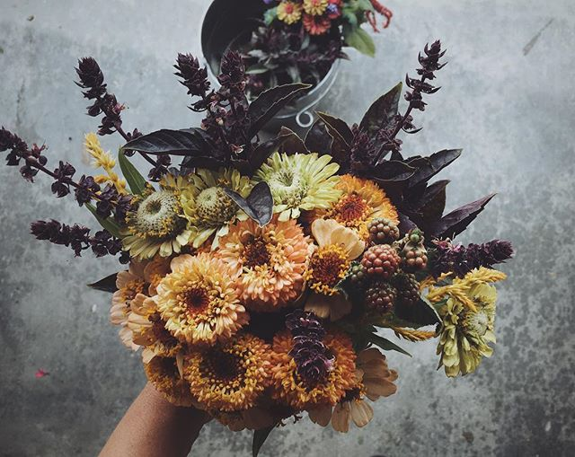 Loving these colours😍#marketbound #pentictonfarmersmarket #heirloomflowers #sweetlittlebouquet