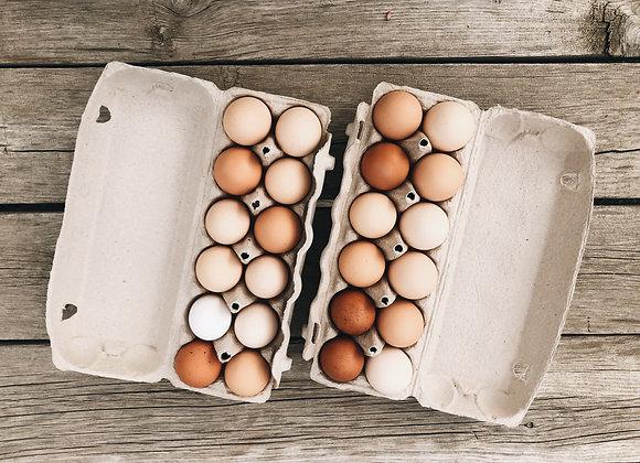 Eggs (3 dozen)
