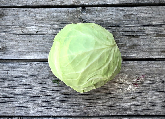 Green Cabbage (3 lbs)