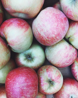 Honey crisps are so awesome right now as are the September fugis😊🍎#applesareon #anappleaday #honey