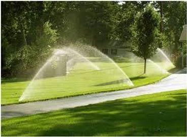 rotors watering photo.jpg