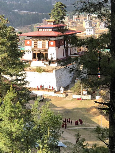 Above Dechenphodrang Monastery #Thimphu
