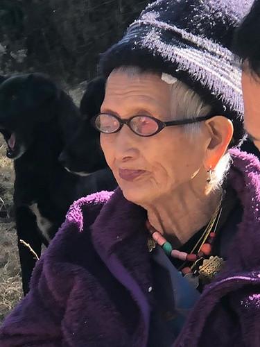 Late Lhamo and yawning dog